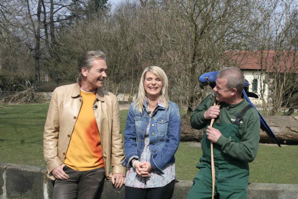 """Filmstar Ara """"Quak"""" mit Uta Bresan (53) und Olaf Berger (55) und Tierpfleger Hendrik Collmar im Zoo-Jubiläumsfilm."""