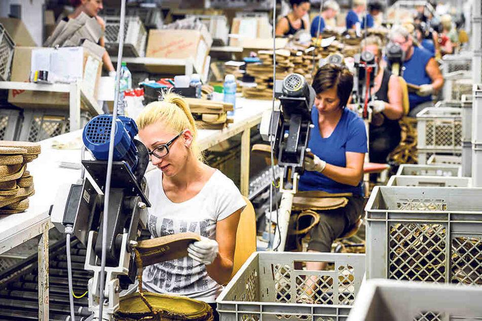 Schon mehr als 1000 Beschäftigte arbeiten bei Birkenstock in Görlitz. Auch aktuell gibt  es offene Stellen.