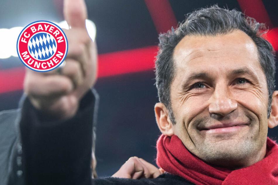 """FC Bayern fixiert Personalien: """"Unsere Identität bewahren"""""""