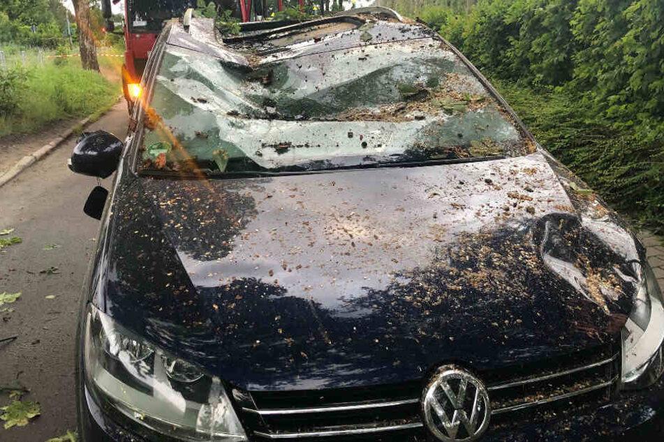 Ein Autofahrer wurde von einem Baum getroffen. Der Fahrer blieb zum Glück unverletzt.