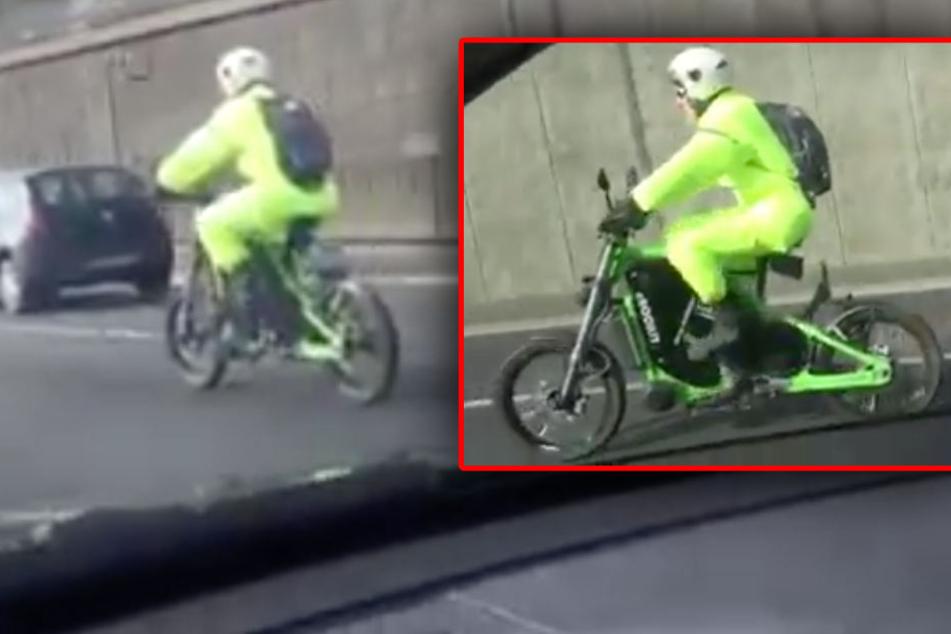 Ein Autofahrer machte die kuriose Sichtung und hielt das Handy drauf. (Bildmontage)