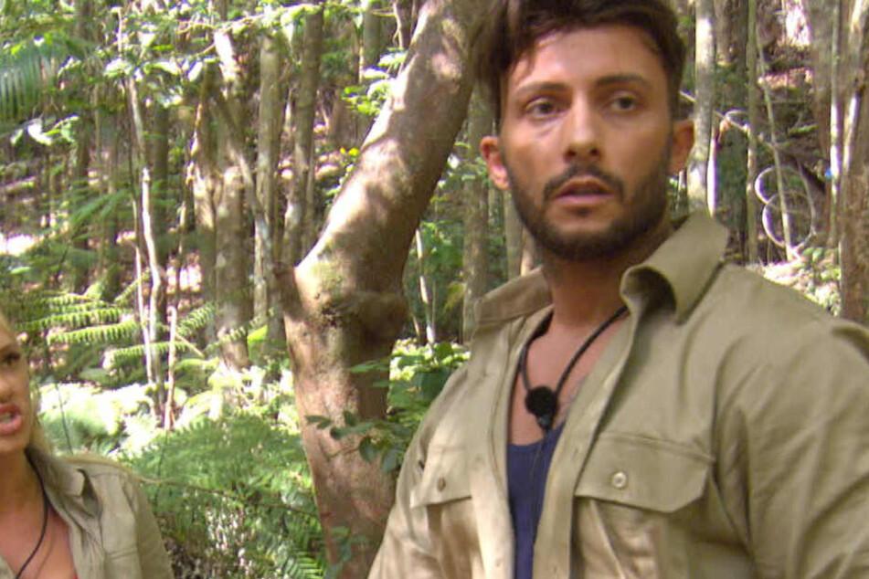 Dschungelcamp: Er flog als Erster: Wie geht es Domenico nach dem Aus im Dschungelcamp?