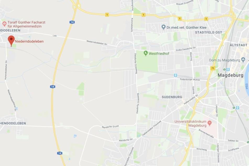 Der Bahnhof in Niederndodeleben befindet sich westlich von Magdeburg.