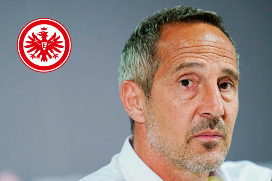 """""""Gebranntes Kind"""": Eintracht-Coach Hütter nimmt Pokalspiel in Mannheim sehr ernst"""