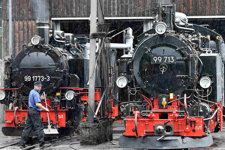 Zwischen Cranzahl und Oberwiesenthal wird gebaut, deshalb bleiben die Züge der Fichtelbergbahn in der Zeit im Bahnhof. (Archivbild)