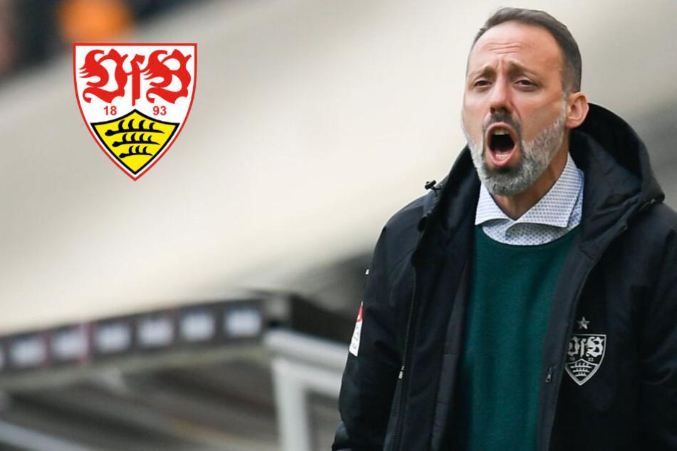 Gegen Regensburg: Macht der VfB heute nächsten Schritt in Richtung Aufstieg?