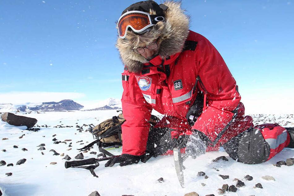 Forscher finden Belege für ein Ur-Meer in der Arktis. (Symbolbild)
