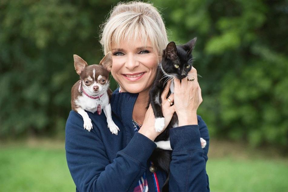 Ob Hund oder Katz: Moderatorin Uta Bresan (52) vermittelt seit 1994 Heimtieren ein neues Zuhause.