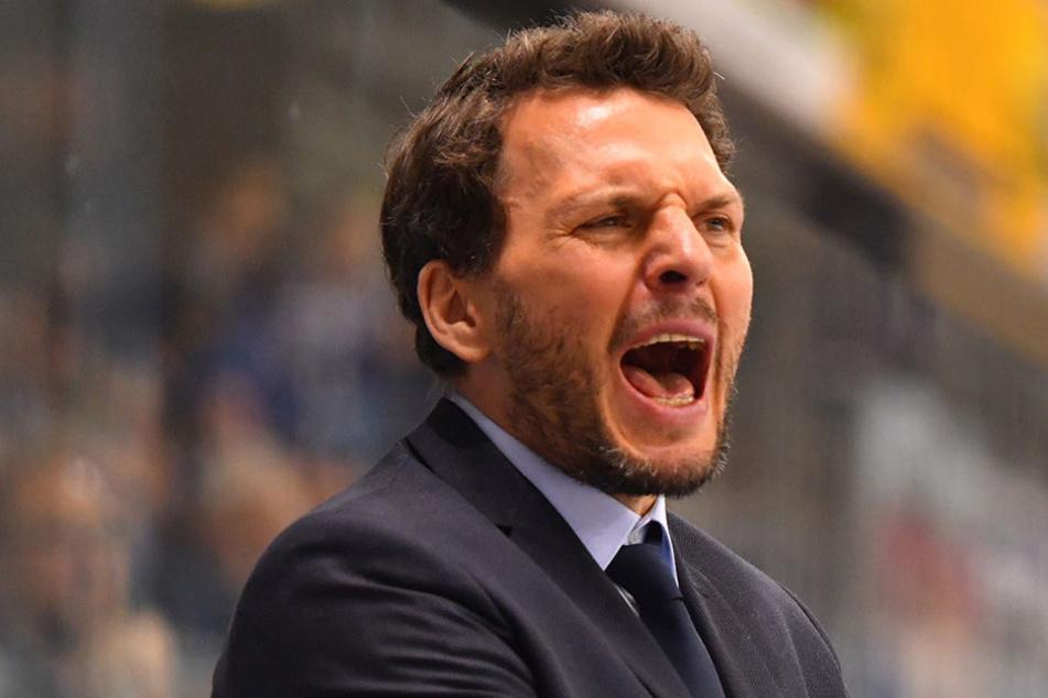 Jochen Molling (45) ist nicht länger Coach der Dresdner Eislöwen.