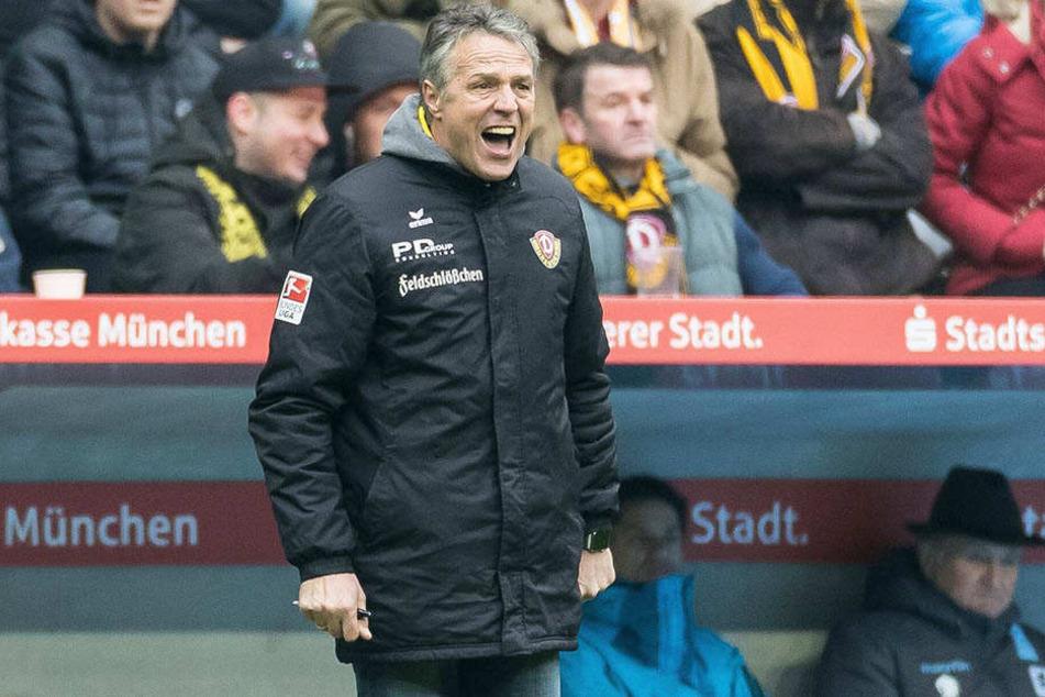 Dynamo-Trainer Uwe Neuhaus verstand am Ende die Welt nicht mehr.