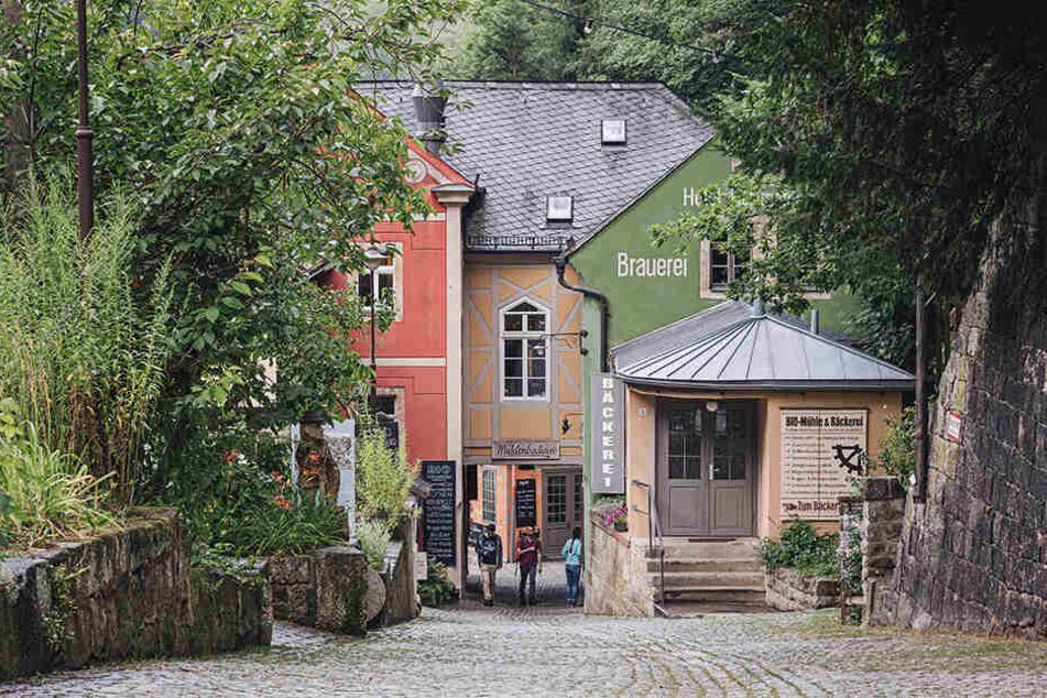 Stippvisite 30 Jahre nach dem Mauerfall: In Schmilka besuchten die Bremer Blogger auch die Schmilksche Mühle.