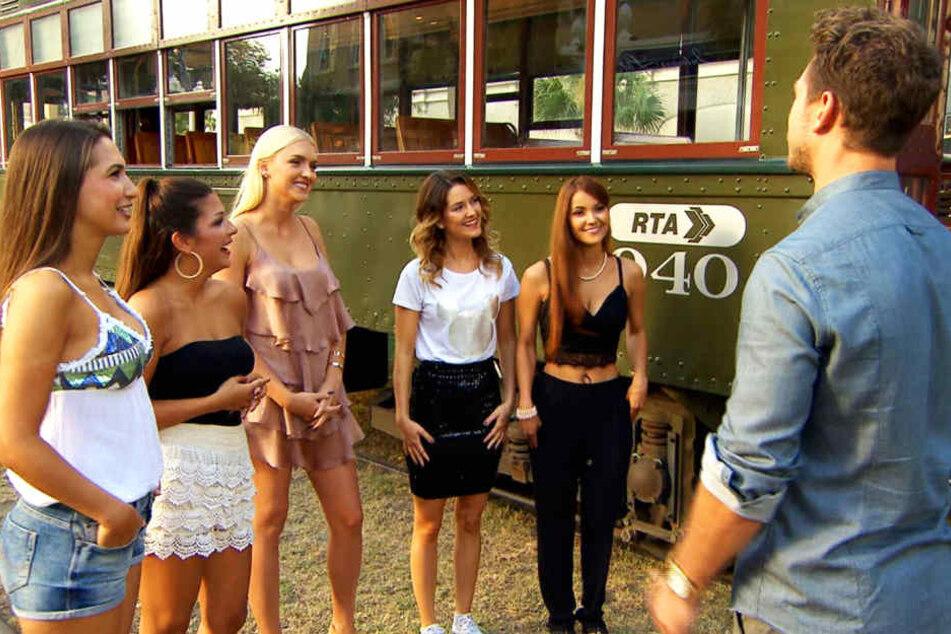 Sie kämpfen noch um die letzte Rose: Clea-Lacy (v.l.), Inci, Erika, Viola und Kattia.