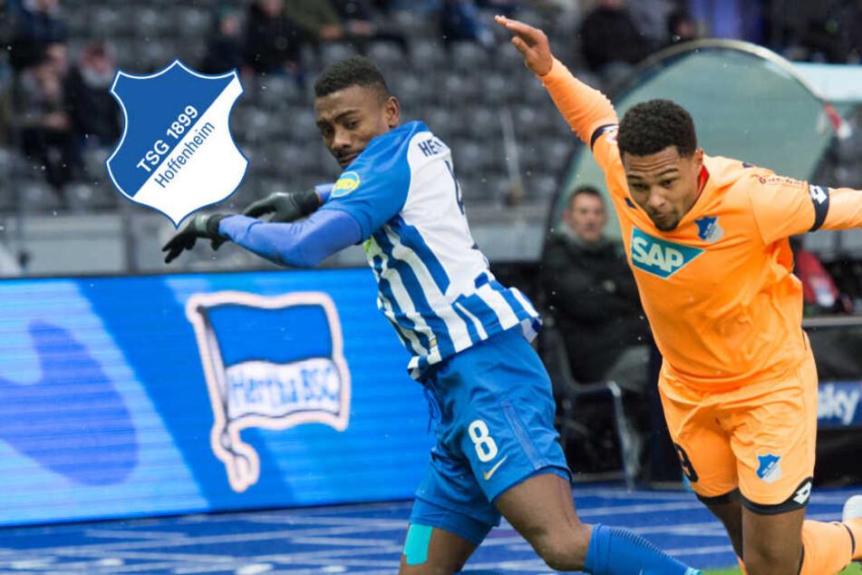 1:1 beim Spiel Hoffenheim gegen Hertha