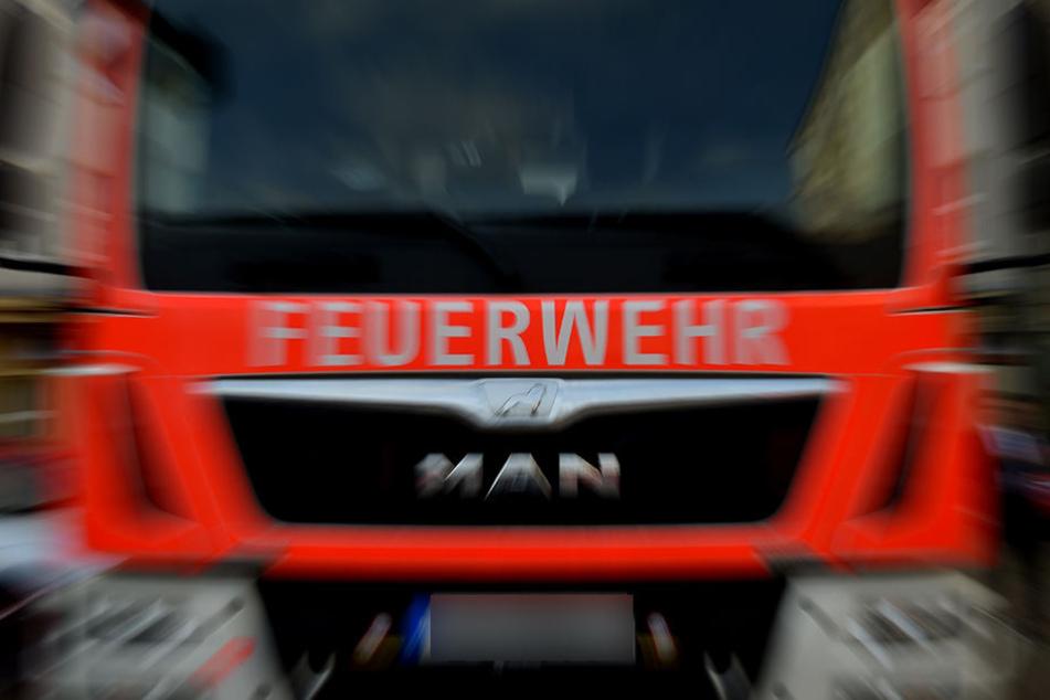 Die Kameraden der FFW Pegau konnten das Gewächshaus nicht mehr retten. (Symbolbild)