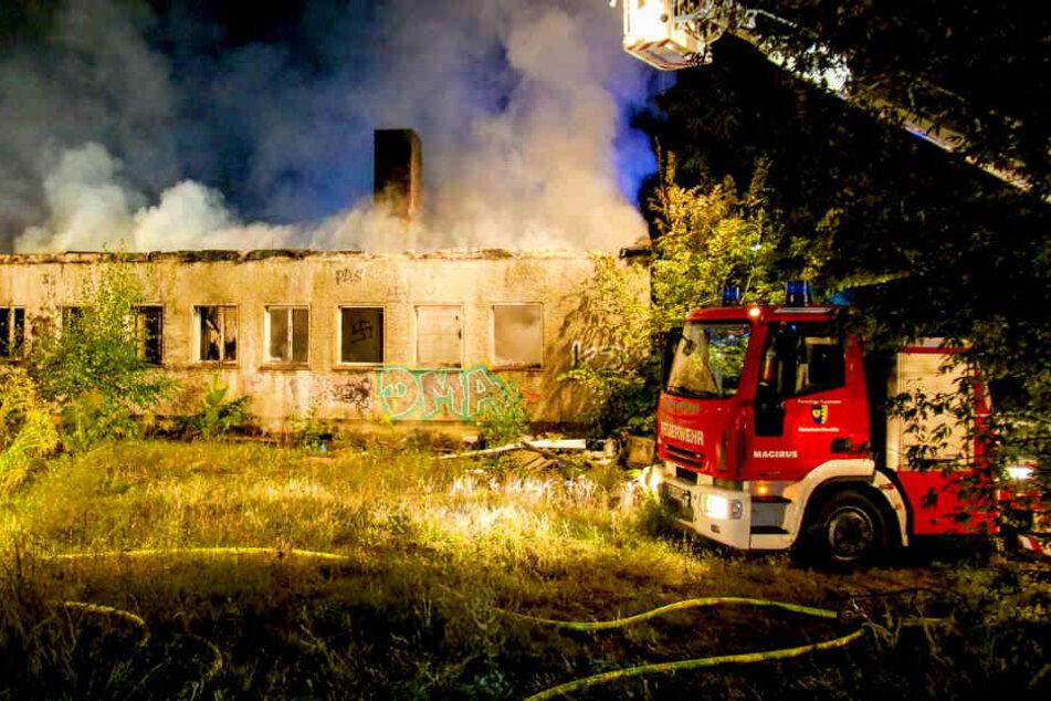 Großfeuer auf Gelände von Schloss Dammsmühle ausgebrochen