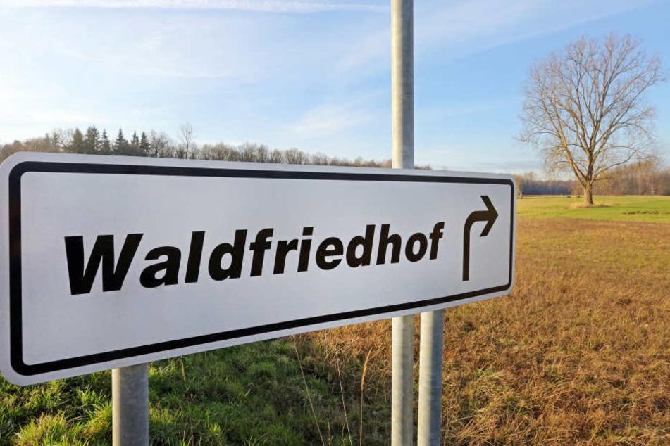 In der Nähe des Waldfriedhofes in Birkenwerder sprach ein 48-jähriger Berliner Kinder an und wollte sie mit nach Hause nehmen.