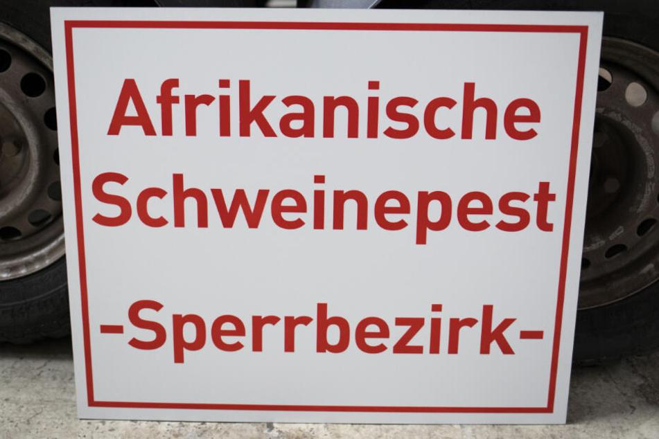 """Ein Schild mit der Aufschrift """"Afrikanische Schweinepest -Sperrbezirk-"""" lehnt im hessischen Zentrallager für Tierseuchenbekämpfungsmaterial an einem Anhänger."""