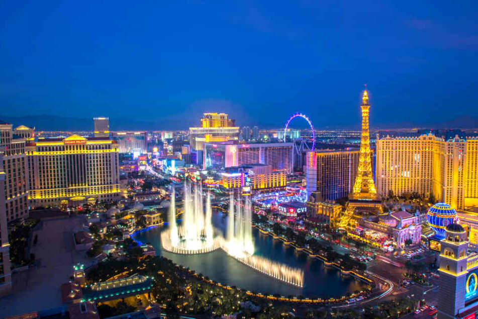Elly hatte ihren Traumjob auf den Bühnen und Showflächen von Las Vegas gefunden.