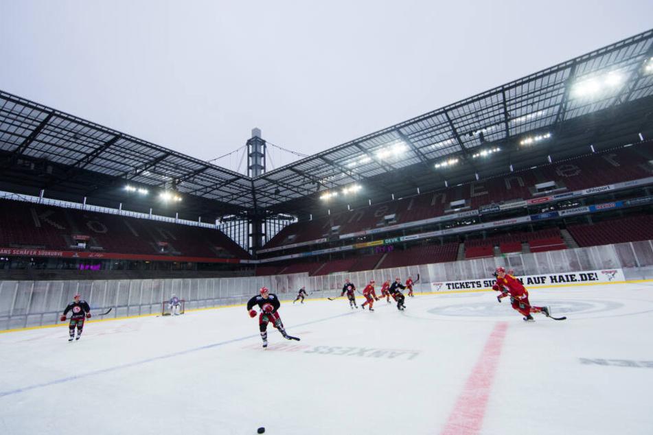 Eishockey: Köln richtet Wintergame 2021 gegen Adler Mannheim aus!