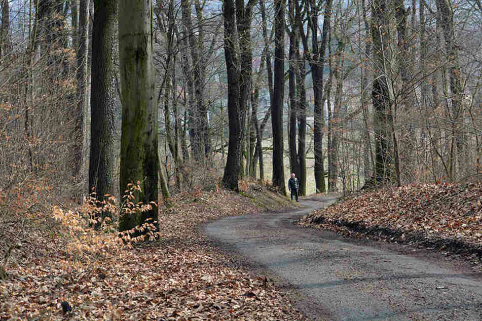 Hier am Weißenborner Wald spielte sich der rabiate Streit ab.