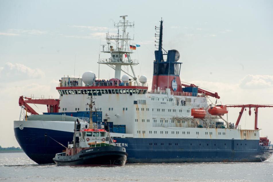 """Die """"Polarstern"""" startet bald zu einer historischen Mission. (Archivbild)"""