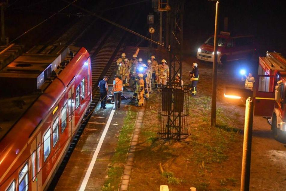 Im Bereich des Haltepunktes Barleber See hat eine S-Bahn Donnerstagabend ein Wildschwein erfasst.