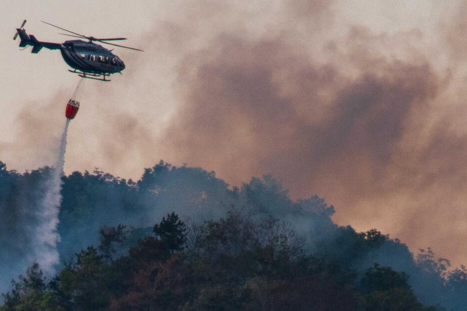 Auch ein Hubschrauber der Polizei unterstütze die Feuerwehren.