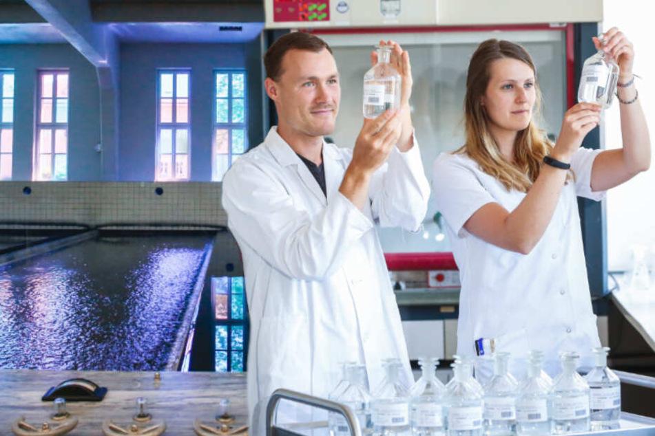 Dresden: Mikroschadstoffen im Wasser auf der Spur: Dresdner Wissenschaftler entwickeln neue Methoden
