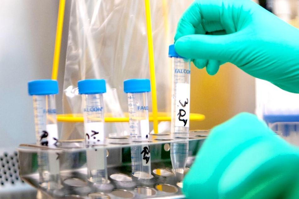 Coronavirus erreicht Mecklenburg-Vorpommern: Erste Infektionen bestätigt!
