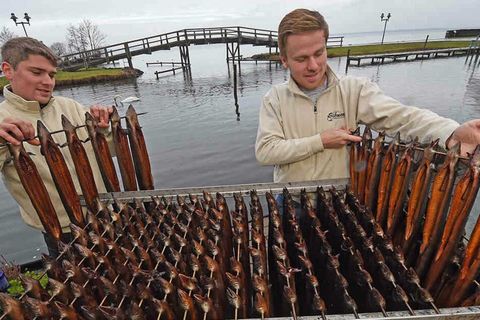 Der betroffene Fischereibetrieb betreibt einen beliebten Imbiss für Räucherfisch. (Symbolbild)