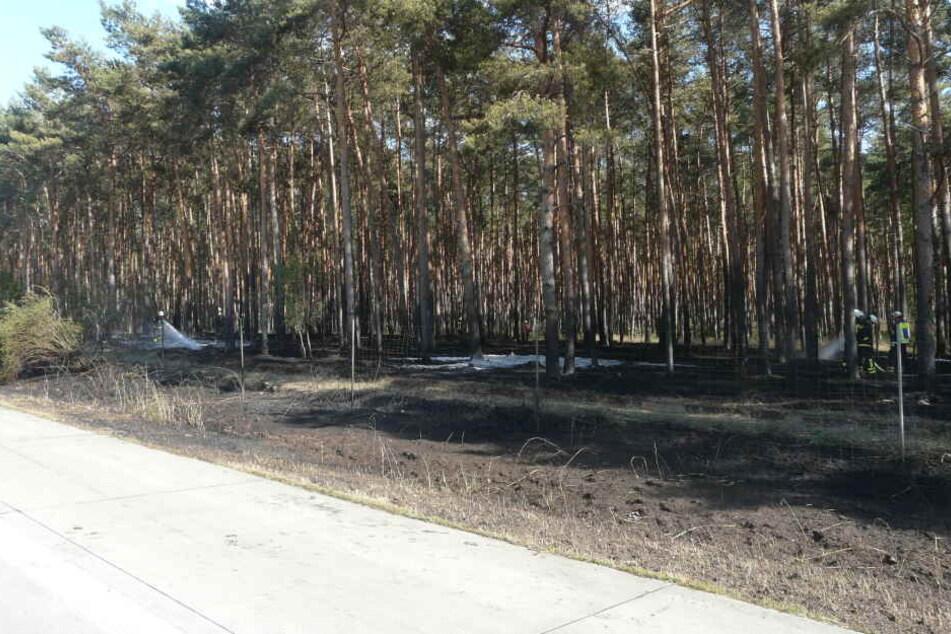 Trotz Einsatzes der Feuerwehr breiteten sich die Flammen zunächst immer weiter aus. Erst nach etwa einer Stunde war der Brand unter Kontrolle.