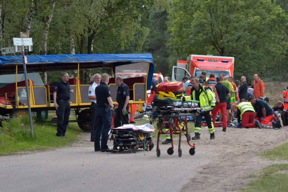 Erneuter Kutschenunfall in Lüneburger Heide! 18 Verletzte, teils Lebensgefahr