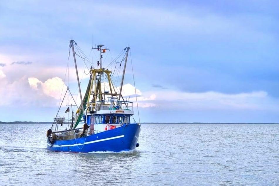 Die Fischerei in der Nordsee ist ein wichtiger Wirtschaftszweig in Norddeutschland (Foto:123RF/lianem).