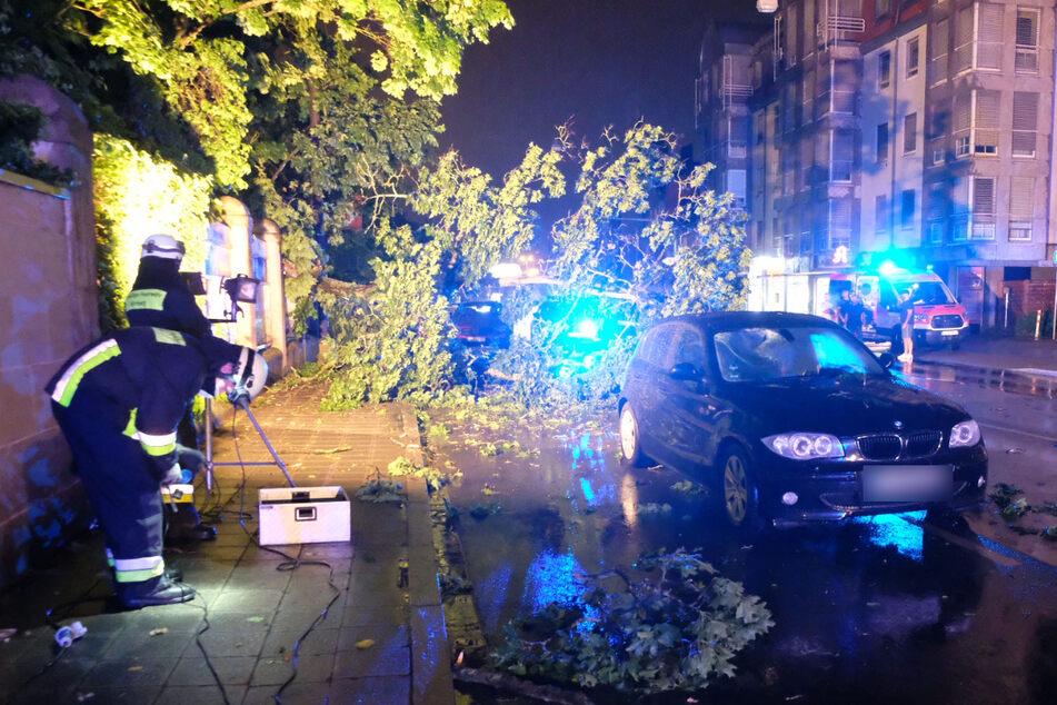 In Nürnberg wurde ein Baum auf die Fahrbahn gedrückt, der dabei auch ein Stromkabel mit sich riss. Ein BMW-Fahrer kollidierte mit dem Baum.