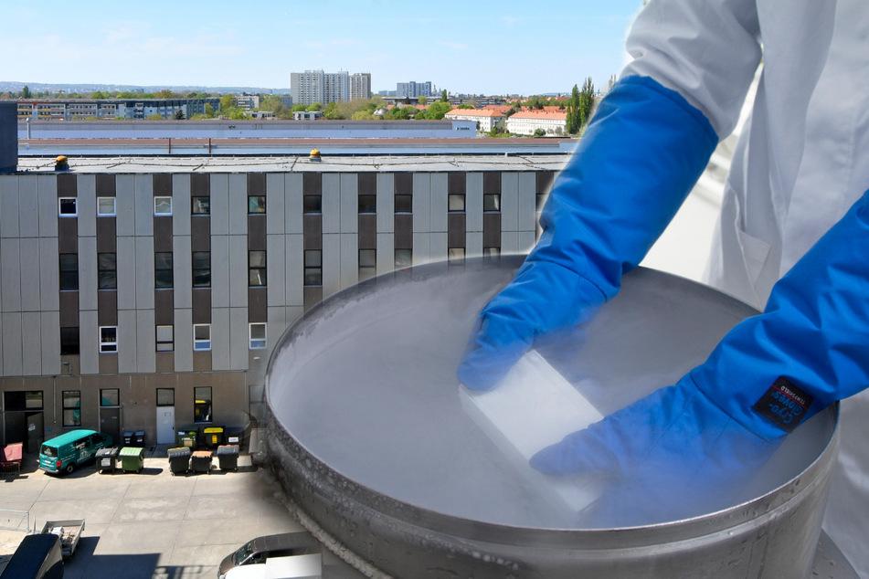 Dresden: Schnelle Hilfe für Blutkrebskranke: In Dresden entsteht Europas erste Stammzellenbank