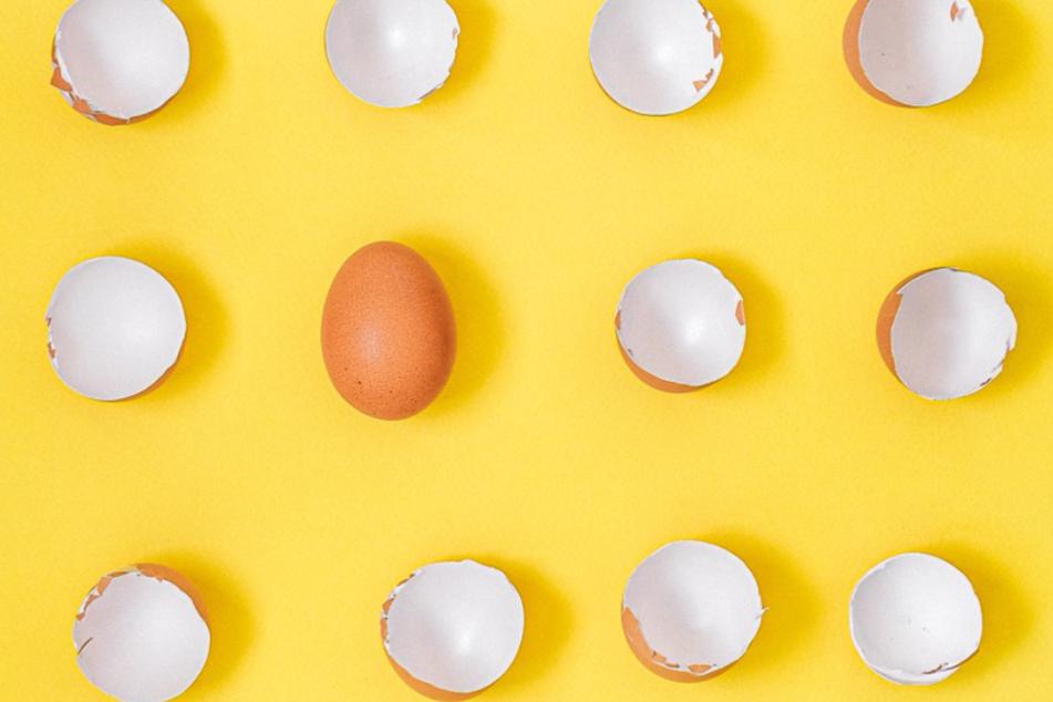 Das Ei: Nicht nur kulinarisch ein Allrounder, sondern auch, wenn es um die Verwertung der Schale geht.