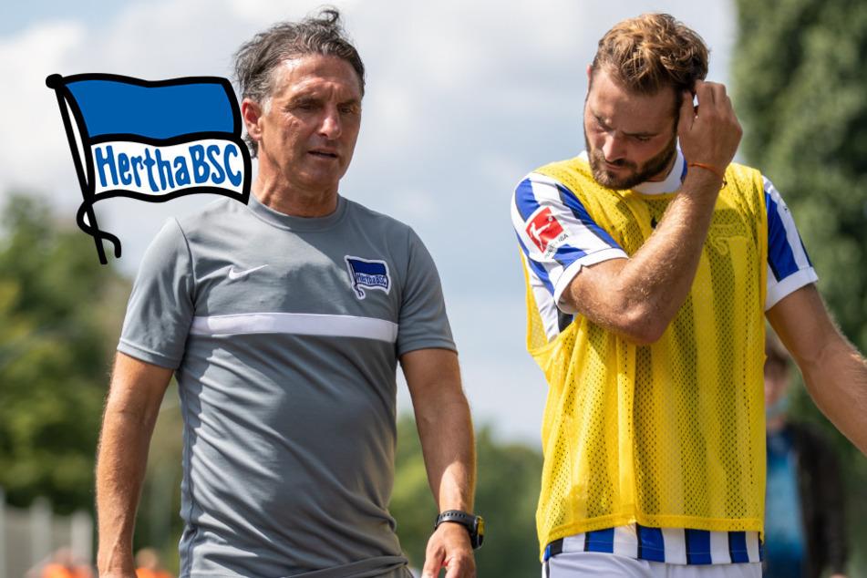 Rüstet Hertha im Sommer richtig auf? Das sagt Coach Labbadia