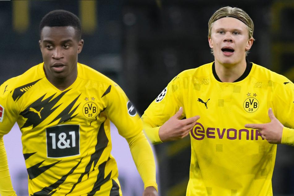 Schießen sie bald gemeinsam Tore? Die sehr jungen BVB-Stürmer Youssoufa Moukoko (16, l.) und Erling Haaland (20) könnten laut ihrem Trainer bald zusammen auflaufen.