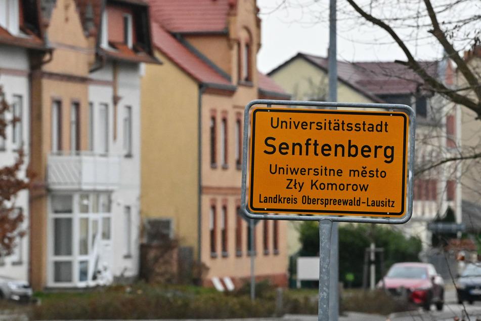 Die Fahrgäste sind bei dem Vorfall kurz vor dem Bahnhof Senftenberg (Landkreis Oberspreewald-Lausitz) nach bisherigen Erkenntnissen nicht verletzt worden. (Archivbild)