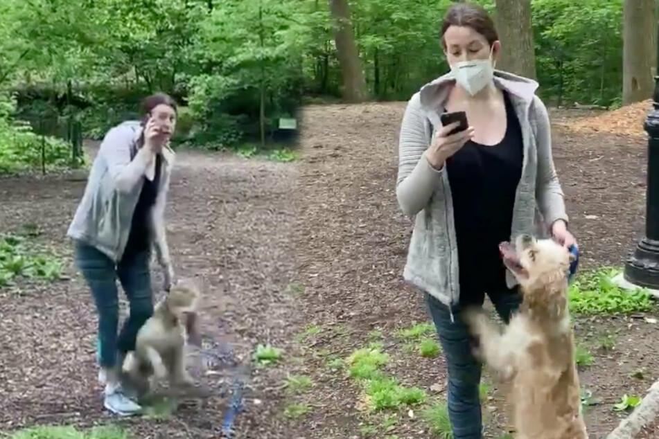 Amy macht ernst: Völlig siegessicher greift sie nach ihrem Handy und behauptet, von einem Schwarzen bedroht zu werden.