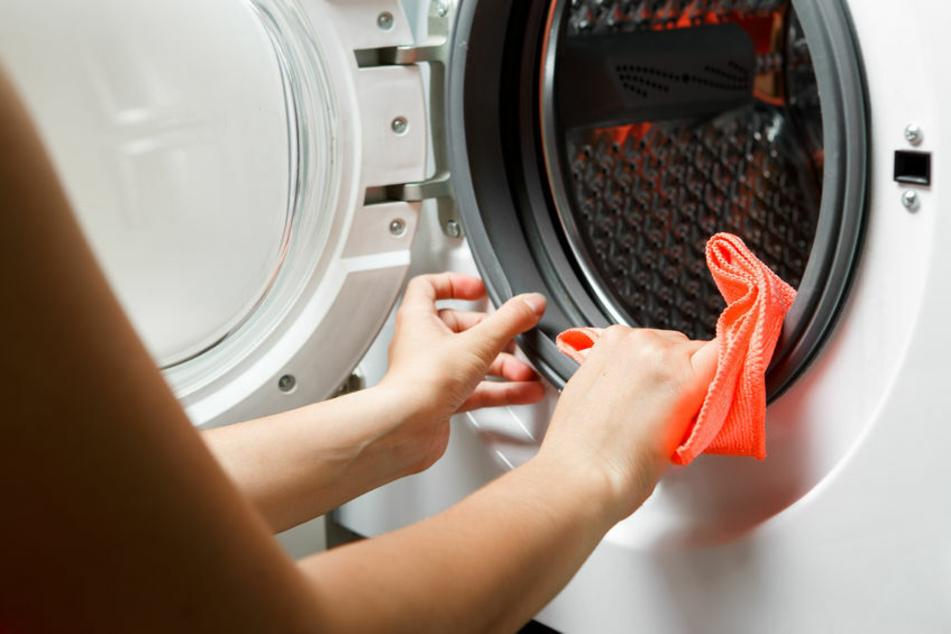 Die Gummi-Manschette der Waschmaschine sollte gründlich abgewischt werden.