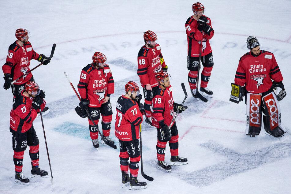 Kölner Haie auf gutem Weg: Tendenz Richtung Saisonstart