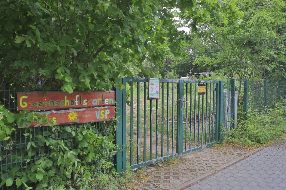 Im Gemeinschaftsgarten Prohlis gärtnern Geflüchtete und Deutsche aller Altersklassen gemeinsam