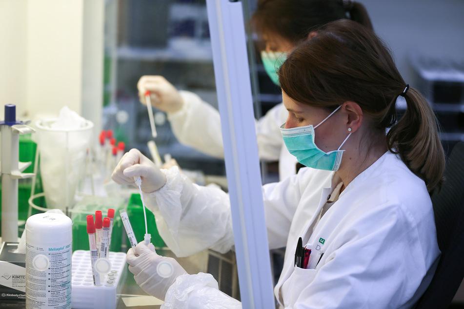 Corona-Tests: So läuft die Arbeit in den Laboren ab