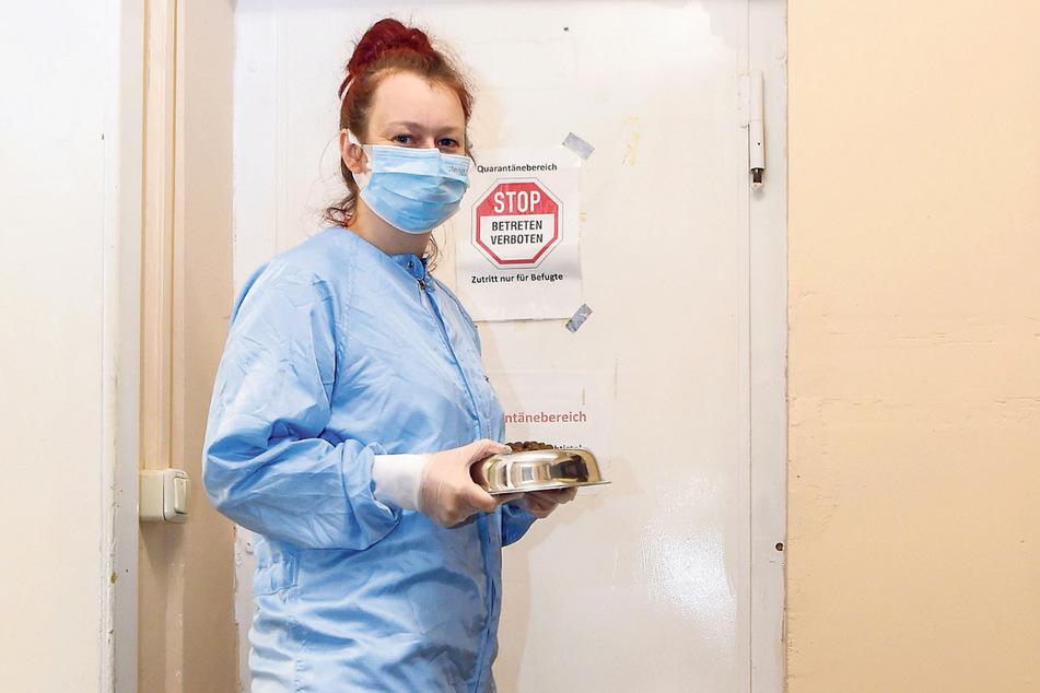 Romy Rösner (34) arbeitet als Tierpflegerin auf der Quarantänestation im Tierheim Freital.