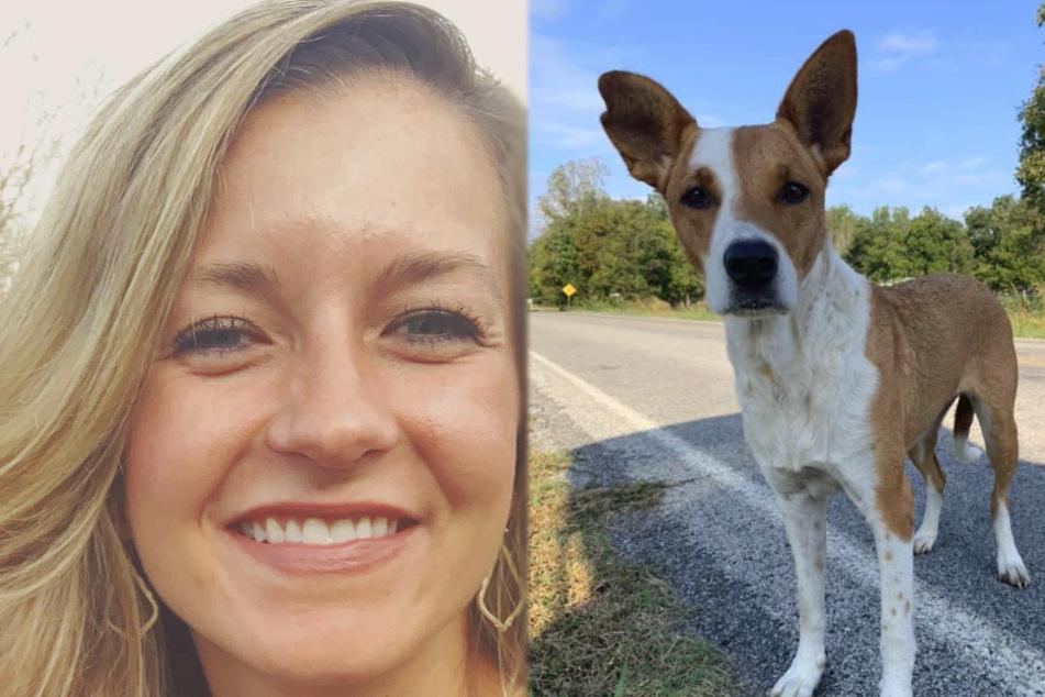 Tierschützerin Paige Bodden erlebte bei einer Hunderettung eine verrückte Geschichte.