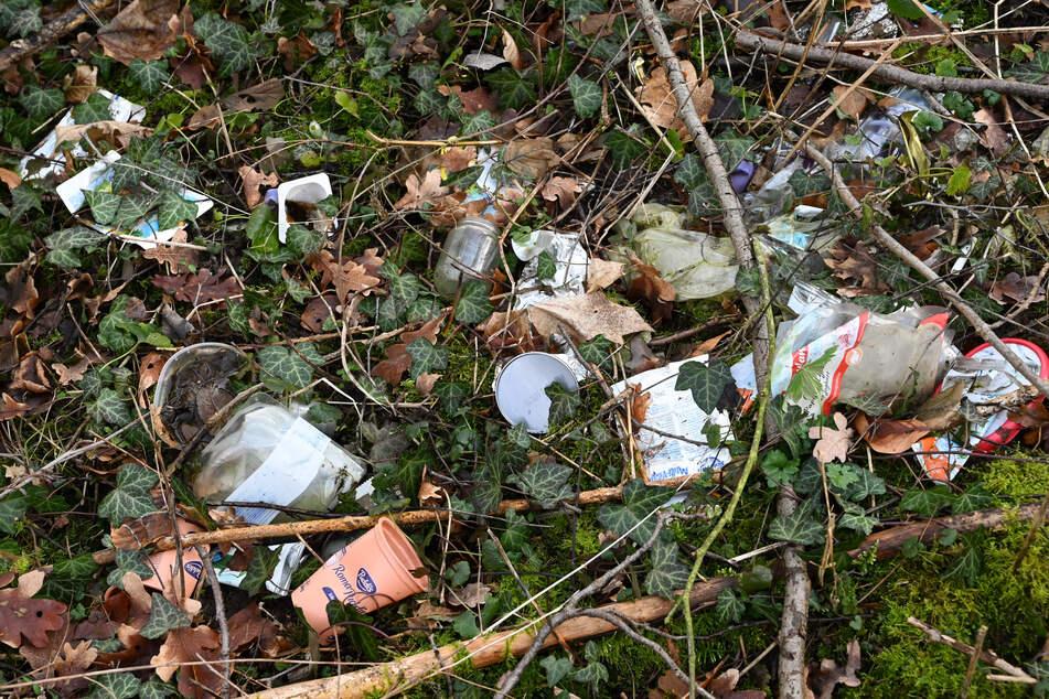 Jugendliche sammeln Müll im Wald: Ein Fund lässt ihren Atem stocken