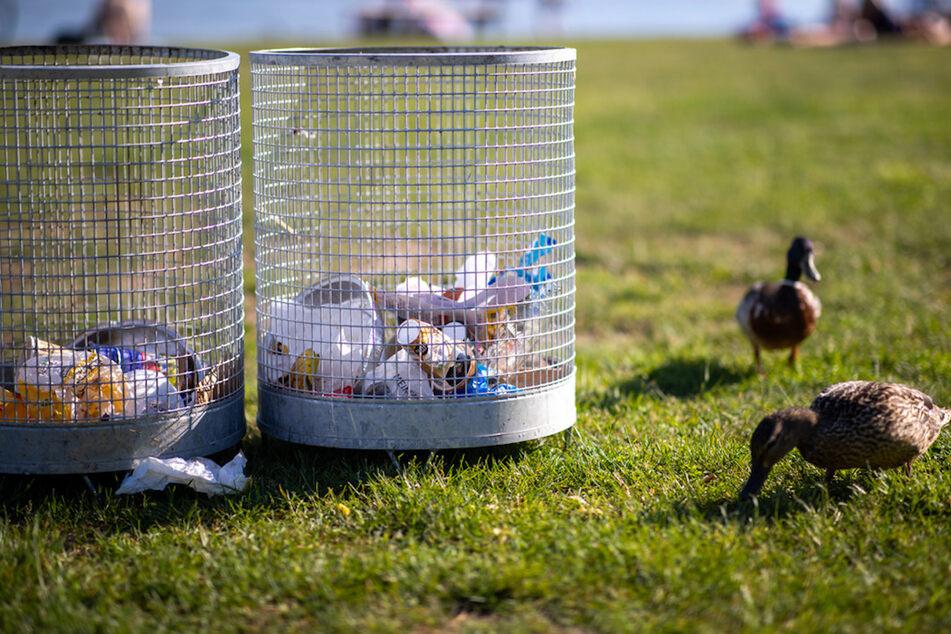 Die Mülleimer gehören am See nun der Vergangenheit an. So sollen Besucher gezwungen werden, ihren Abfall wieder mitzunehmen.