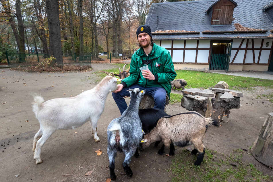 Zoopädagoge Jan Klösters (37) schaut so oft es geht im Streichelzoo vorbei.