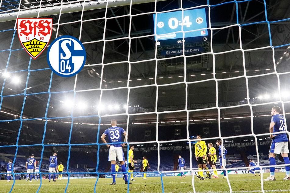 Schalke 04 taumelt in Richtung 2. Liga! Letzter Strohhalm gegen den VfB?